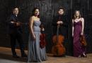 Đêm nhạc Curtis on tour: Vera Quartet