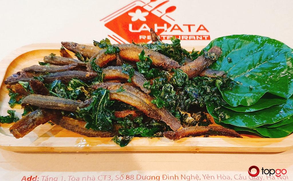 Ưu đãi Tháng 4 nhà hàng Lahata